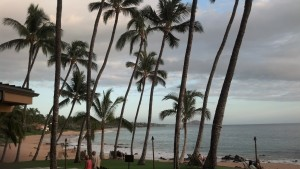View-at-5-Palms