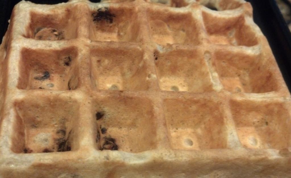 Oatmeal/Raisin  Waffle