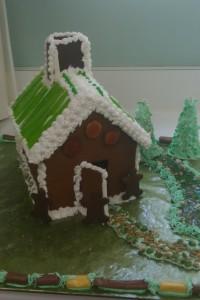 Green GNBD House (5)
